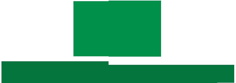 logo hondaotokimthanh.com.vn